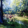 Swimming hole, creek and springs