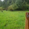 6,000 sq ft Alder Creek Front Lot