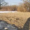 RWH Farm Woods