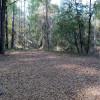 Blackberry Island with Devall Creek