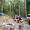Hike up the Mini Forest Campground