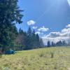 Tent Camping on Vashon Flower Farm