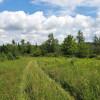 Nature's Meadow Peaceful Getaway