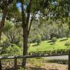 Hinterland Mount Nathan, Gold Coast