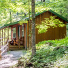 Forest Cottage on Spruce Mountain