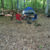 Tent camping in a hard wood forest