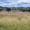 Carrington, Views, Wildlife & Water