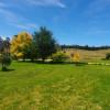 Avocado Grove Farm Stay
