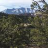 Sheep Mountain Property  (35 Acres)
