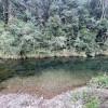 Sunshine Coast Creek Camping