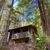 Historic Camping Cabin 38