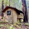 Historic Camping Cabin 17