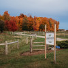 Greener Pastures Eco Farm