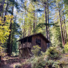 Historic Camping Cabin 9