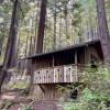 Historic Camping Cabin 18