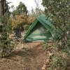 The Grove, Private Tent #1
