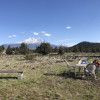 Epic Mt. Shasta Country Beauty