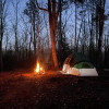 Rustic and Evergreen Camping