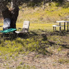 Site 1,  Field under walnut trees