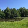 XXL Camp on Prayer Mountain Farms