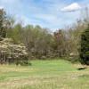 Secluded Glen on Prayer Mountain