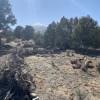 Great Basin Views Camping