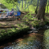 Taino Woods Sanctuary (Entire Camp)