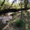 Water Sounds At Creek Side Camping