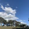 Mindful Earth Regenerative Farm