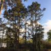 RV Campsite on Lake Hamilton