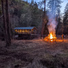 Forested creekside campsite