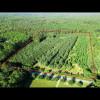 The Oakstead Farm