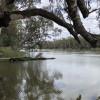 Murray River Bush Camp