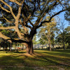 *Peaceful Private Lowcountry RVing