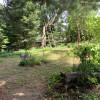 Basecamp Backyard Tent Site