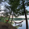 Tent Camping at Applecroft Farm