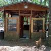 Cozy rustic cabin near the springs