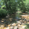 Rustic Creekside Camping (Tent)