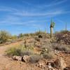 Tucson Mtns Hideaway, Fab Views!