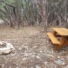Pioneer Campsite