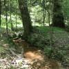 Creek Bend