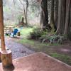 Cedar Grove Camp near Mt. Rainier