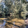 Glenmoore River Camp Chichester