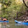 Old Herrera Ranch - Medina River
