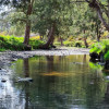Millar Vale Creek Camping