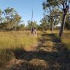 Natural NT Bush Camp