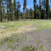 Flat site facing wooded property