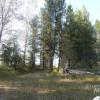 Smylie Camp