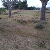 Cockatoo Ridge @ Glenrea