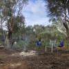 Wardan Aboriginal Centre-Powered